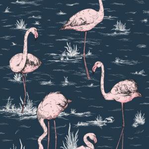 Tapeta Cole & Son kolekcja Flamingos