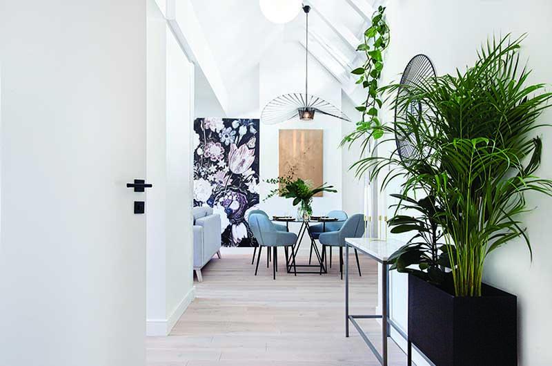 Kwiaty w domu | proj. Studio Loko