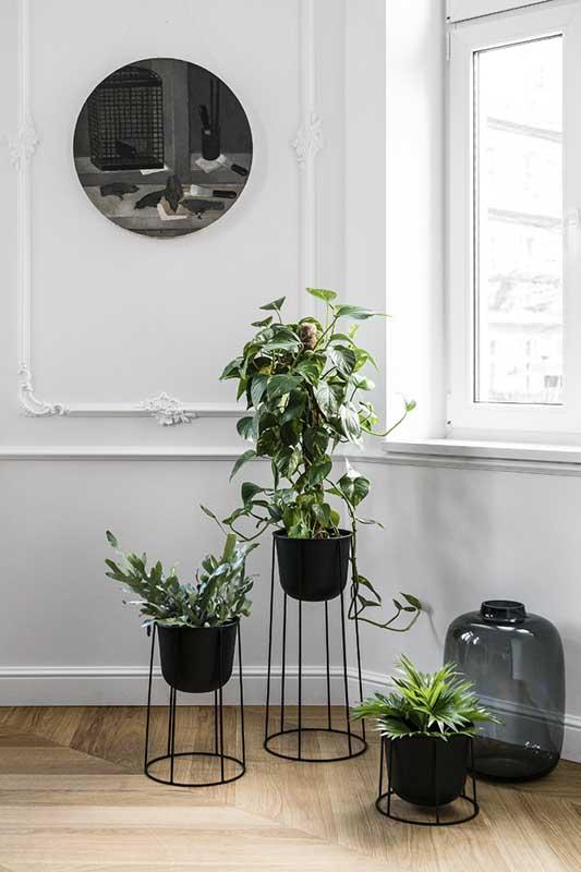 Piękna ekspozycja kwiatów w salonie | proj. Anna Maria Sokołowska Architektura Wnętrz, zdjęcie: Fotomohito