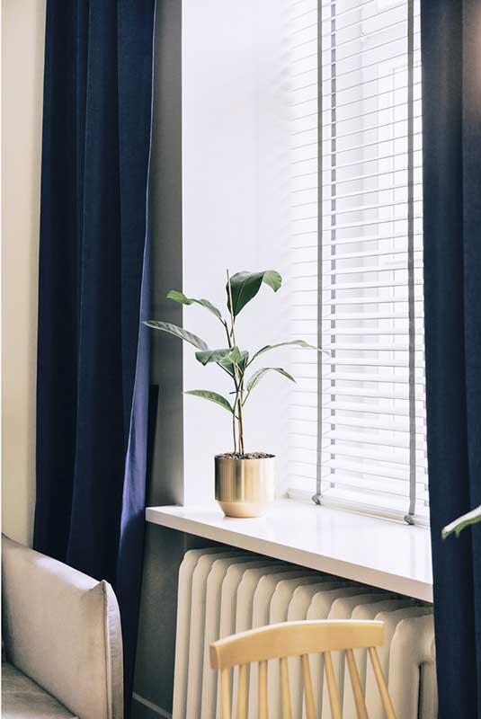 Rośliny doniczkowe w domu | proj. lummo.
