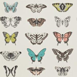 Tapeta Harlequin Papilio – kolekcja Amazilia