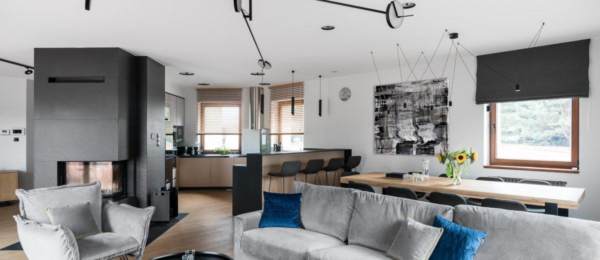 Szary salon | proj. Studio Projekt, zdj. Fotomohito