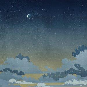 Tapeta Wall & Deco Notturno Blu WDNB1602