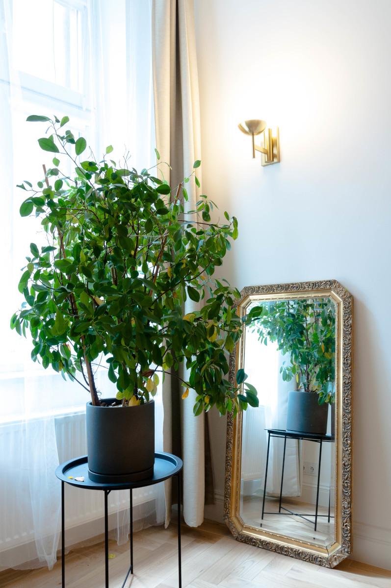 Antyczne lustro w projekcie salonu | proj. Studio Projektowe 4room (architekt wnętrz Lisa Bachurina)