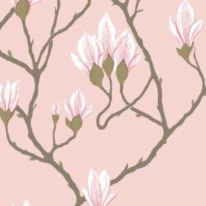 Tapeta Cole & Son Magnolia kolekcja Contemporary