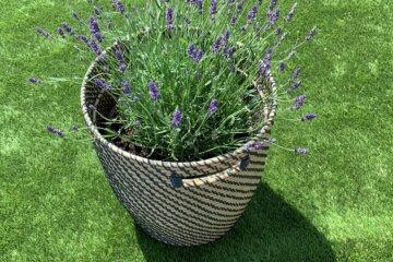 trawa szcztuczna