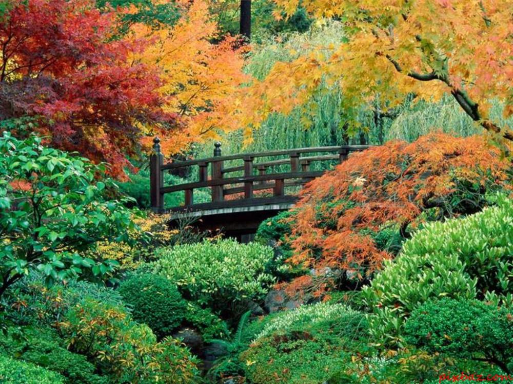 Ogród japoński / pinterest.com
