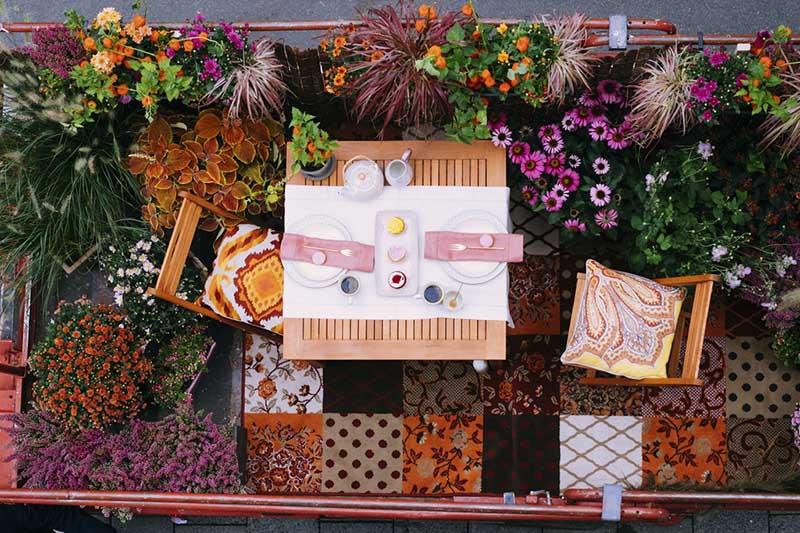Pnącza na balkon w bloku | źródło: flowercouncil.co.uk